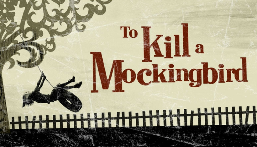 to kill a mockingbird purpose
